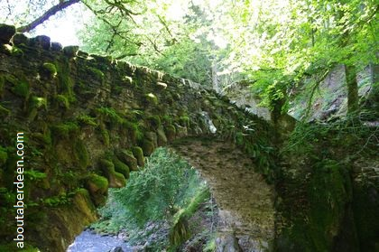 1770 stone bridge covered moss with trees background