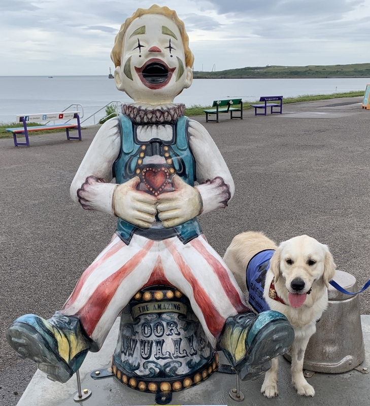 Amazing Oor Wullie Sculpture Beach Benches Aberdeen