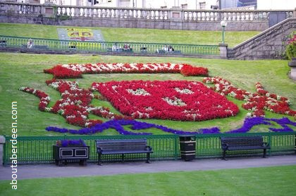 Bon Accord Flower Display