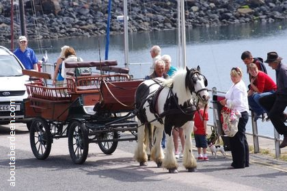 Horse cart ride portpatrick harbour scotland