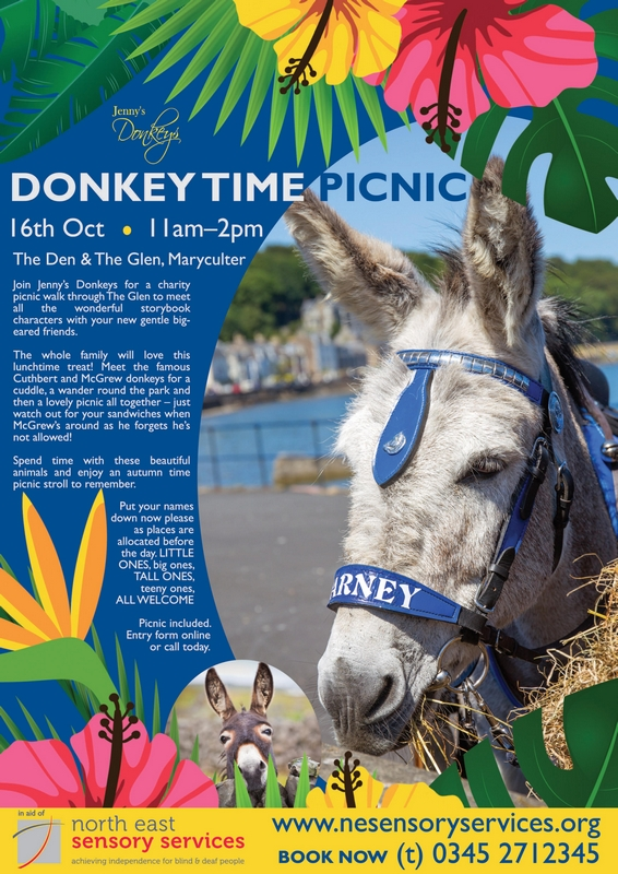 Join Jenny's Donkeys at The Glen in Maryculter for a Picnic Walk