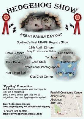 Pet Hedgehog Show Ferryhill Community Centre Aberdeen Scotland