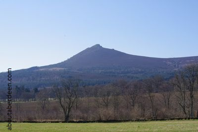 View Bennachie Hill