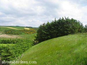 Aberdeenshire Countryside