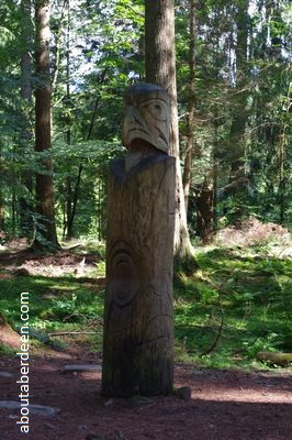 carved totem pole in forest