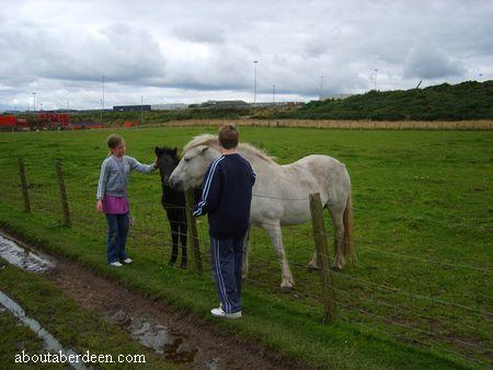 Children and Horses