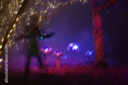 dancing fairy forest lights