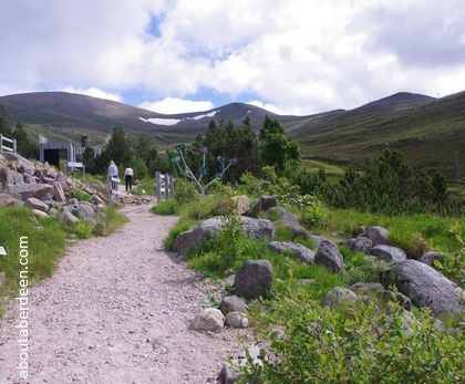 path to cairngorm mountain