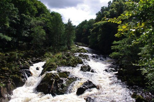 Falls of Feugh Photo
